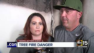 Fire departments discuss Christmas tree fire dangers - Video