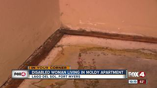 Woman struggling to live in moldy apartment in Fort Myers - Video
