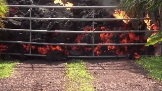 Metal Fence Can't Stop Oozing Lava From Hawaii's Kilauea Volcano