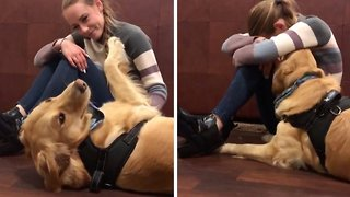 Adorable dogs don't stop cuddling 'upset' owner until she's happy again