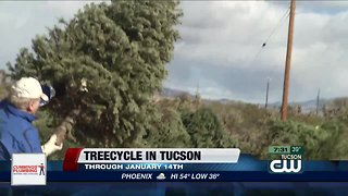 Treecycle in Tucson - Video