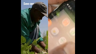 Farmers Connect to Stores Using a Simple App