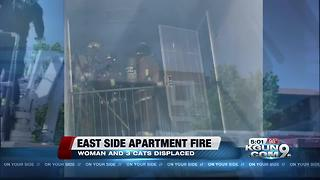 Apartment bathroom fire damages 3 units, residents and pets not injured - Video