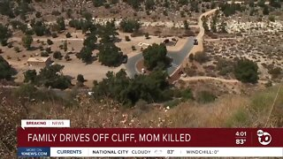 Family drives off cliff, mom killed