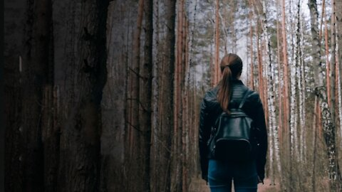 How to Survive Alone in a Forest