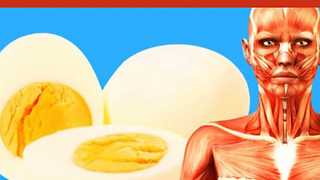 2 eggs per day will result in these 7 effects - Video