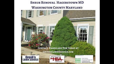 Shrub Removal Smithsburg MD Landscaping Contractor