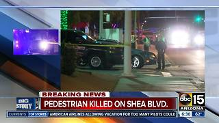 Police looking for hit-and-run driver in Scottsdale - Video