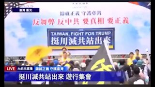 Taiwanese stop the steal & fight for Trump rally 12-19-2020
