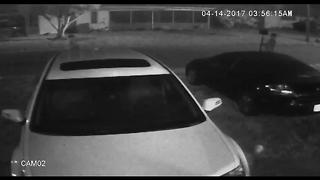 CAUGHT ON CAMERA: Trio steals mailbox in Bradenton - Video