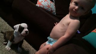 14 Cutest Babies With Dog Best Friends - Video