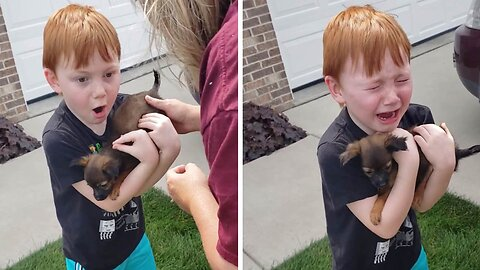 Heart-warming moment boy Is surprised with tiny puppy after saving up