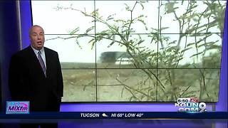 Preparing for upcoming dust storms in Arizona