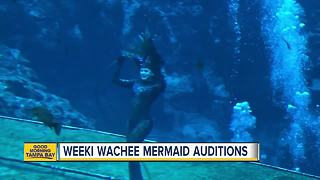 Hundreds to audition to fulfill little girls dream of becoming mermaid - Video
