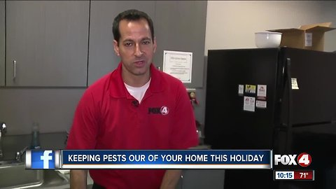 Pests could ruin holiday