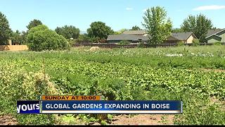 City of Boise making room for refugee gardens - Video
