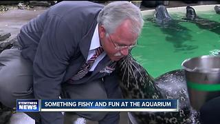 Something fishy and fun at the Aquarium of Niagara - Video