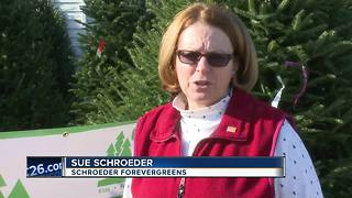 Trees for Troops helps military families - Video