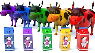 Learn Colors With Milk Cows for Kids