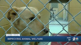 Plans for Tulsa Animal Welfare expansion part of new city budget