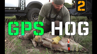 Texas Feral Hog Control with a GPS Tracker | PART 2