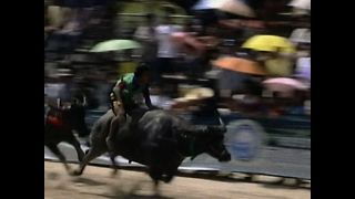Buffalo Racing - Video