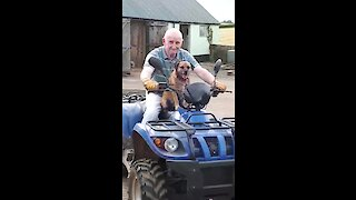 Happy doggy jumps on quad bike with owner