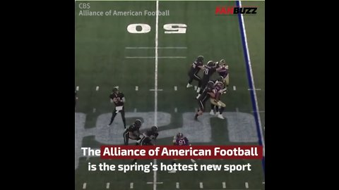 AAF's Highest Attendance Belongs to San Antonio, Proving Texas Football is King