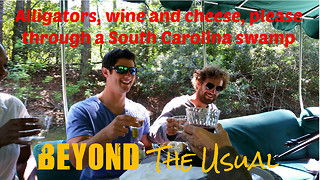 Wine, cheese and alligator hunting through South Carolina swamp - Video