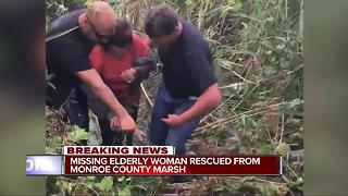 Missing elderly woman rescued from Monroe County marsh - Video