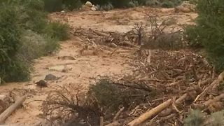 Flash Floods Pull Create Rivers of Debris in Utah - Video