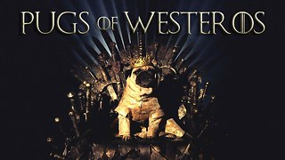 Game Of Thrones Pugs: Meet The Pugs of Westeros - Video