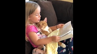 Reading The Cat a Bedtime Story