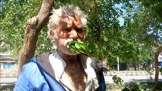 This 50-year-old Pakistani man has been eating wood and leaves for 25 years - Video