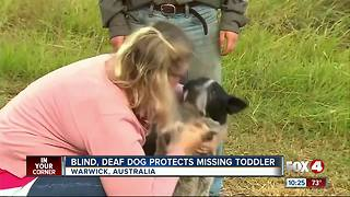 Deaf, blind dog keeps missing 3-year-old safe
