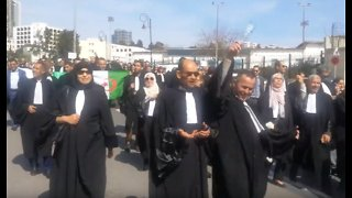 Lawyers Protest in Algiers Against President's Bid for Fifth Term - Video
