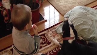 Little Boy Plays Harmonica While Dog Sings