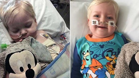 Toddler's life support was being turned off - what happened next stunned doctors