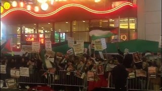 Pro-Palestinian Demonstrators Protest Trump's Jerusalem Decision in Times Square - Video