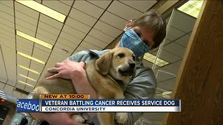 Battle Buddy: Veteran fighting cancer, PTSD receives service dog - Video
