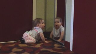 Babies Seeing Their Reflection