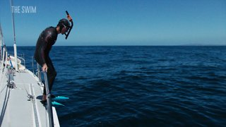 Can a Man Swim 5,500 Miles Across the Pacific Ocean? Introducing The Swim