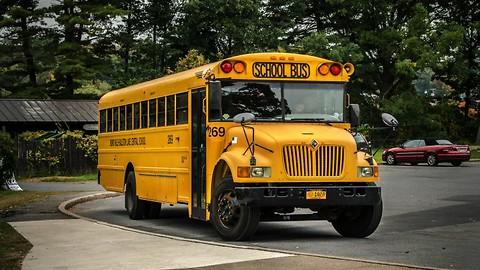 There's a Reason Why All School Busses Are Yellow - Do You Know Why?