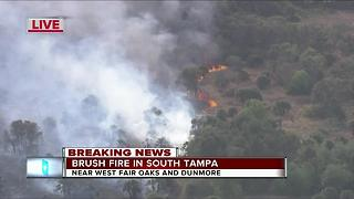 Crews battle brush fire in South Tampa - Video