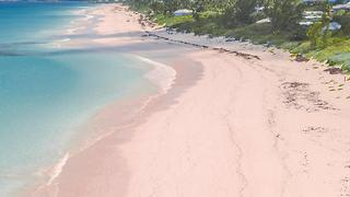 Where to Find the World's Most Beautiful Pink Sand Beaches - Video