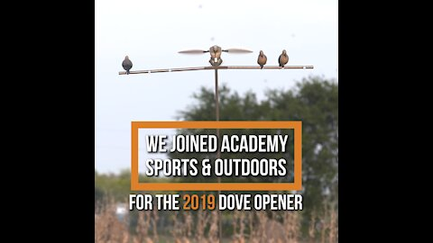 Texas Dove Opener With Academy Sports & Outdoors