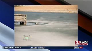 Dog falls into icy Lake Zorinsky - Video