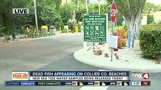 Collier County to sample beaches for red tide