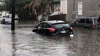New Orleans Street Submerged After Torrential Rain - Video