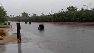 Trash Cans Float Away in Phoenix Flooding - Video